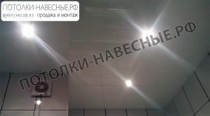 reyka-18